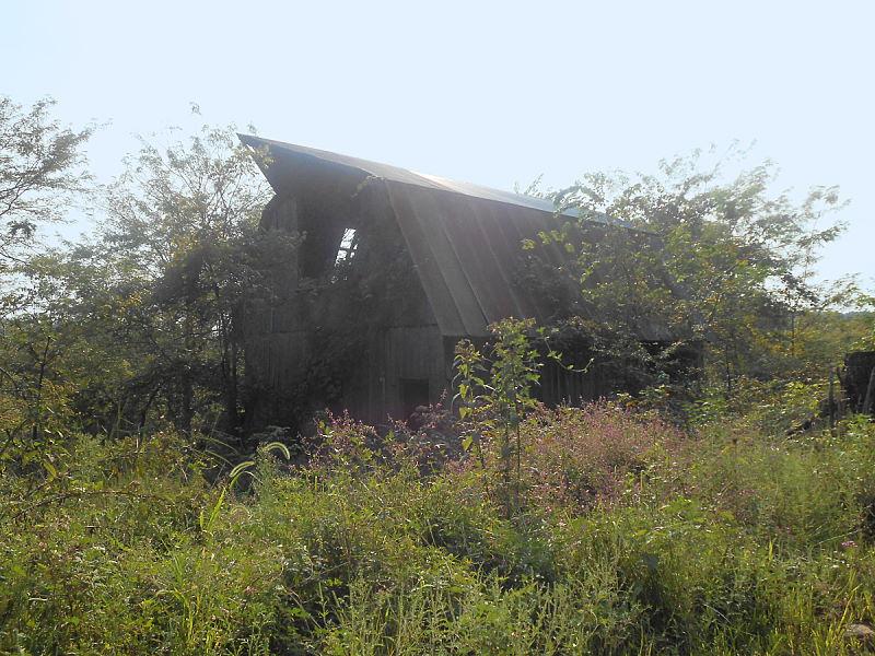 Orville's Barn